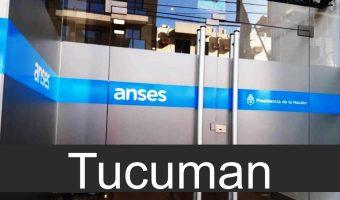 anses en Tucuman