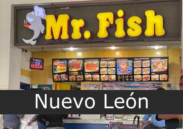 mr. fish Nuevo León
