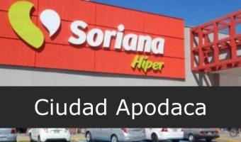 soriana Ciudad Apodaca
